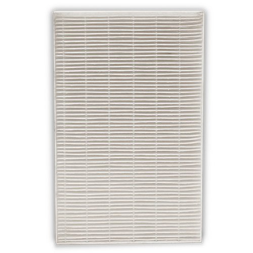 Honeywell Filter R True HEPA Replacement Filter - 2 Pack, HRF-R2